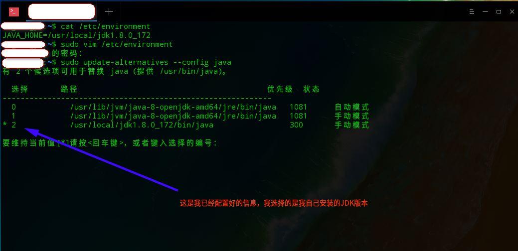 Deepin Linux在配置环境变量后再使用【java -version】命令得出OPEN-JDK的结果而不是自定义的JDK的版本信息