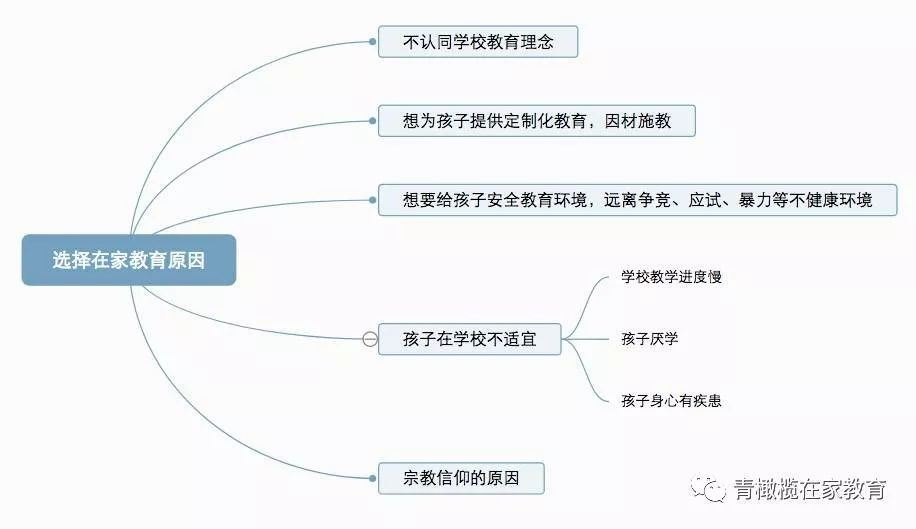 Homeschool 在家教育初步走